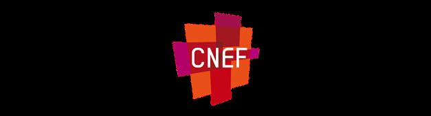 Le CNEF en personnes (en 2010)